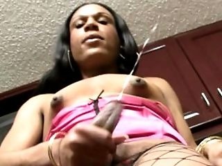 Black T-honey With Perky Puffies Playthings Culo Slot With Cucumber