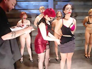 Lesbo Five Marionette Training Intakefeatured Trainer Claire Adams - Thetrainingofo