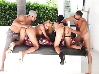 Shemale Cocksluts Banged Hard Outdoor